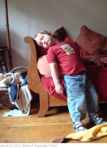 'Dylan asleep on his feet' photo (c) 2007, Brian Fitzgerald - license: http://creativecommons.org/licenses/by/2.0/