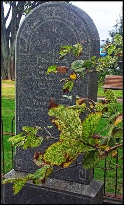 headstone-blog