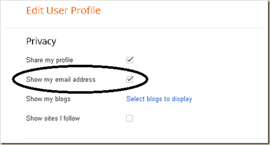 Shona Skye Creations - Enable Replies with Google  Profile 009
