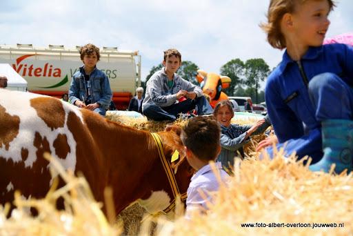 koeien kijken boer martij 18-06-2011 (21).JPG