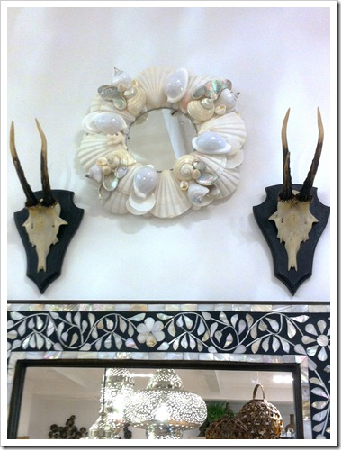 shell mirror and antlers