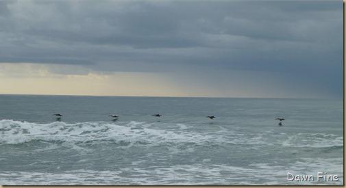 North beach  _159