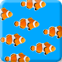 Fish School Live Wallpaper icon