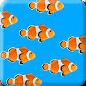 Fish School Live Wallpaper