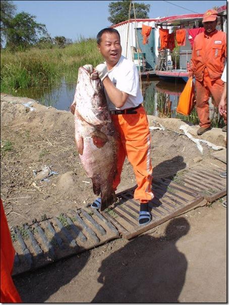 big-fish-fishing-2