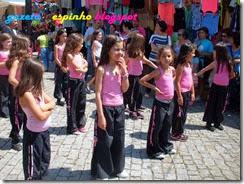 GAZETA DE ESPINHO003Livro MCS