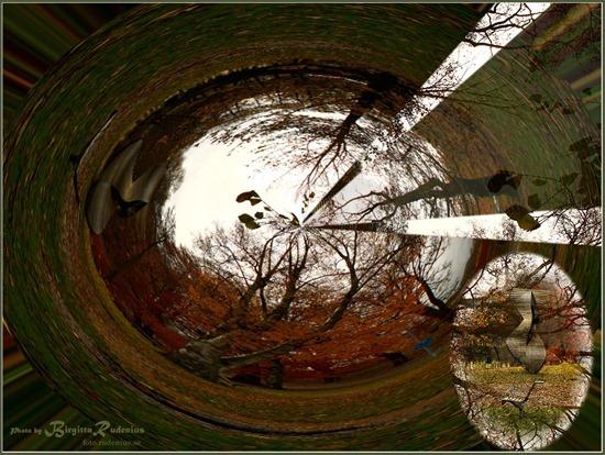 pm_20111029_worlds
