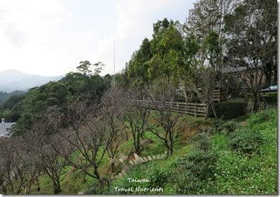 新店 文山農場 (44)