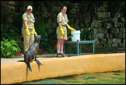 Zoo4 391