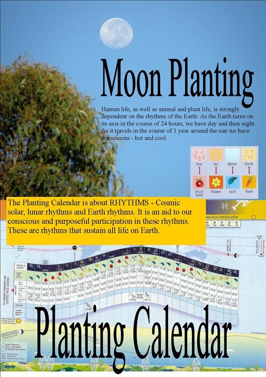 [planting%2520cal.cover%255B5%255D.jpg]