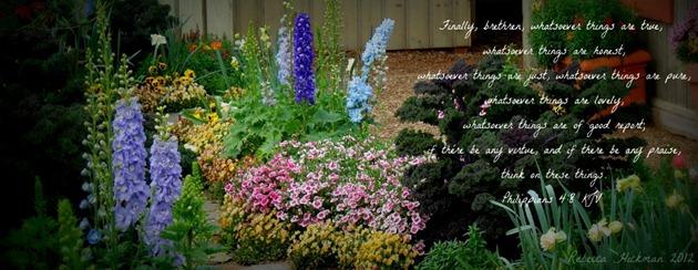 gardencover (850x303)
