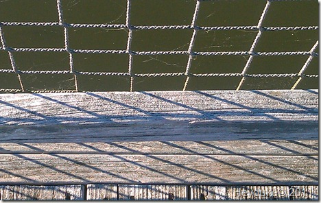 Textures -  Myrtle Beach 008