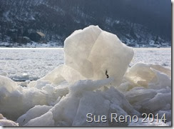 Ice on the Susquehanna River, 2/2014, by Sue Reno, Image 9