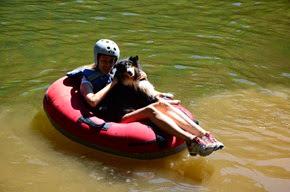 Pets Adventure 18 (141_1) (11)