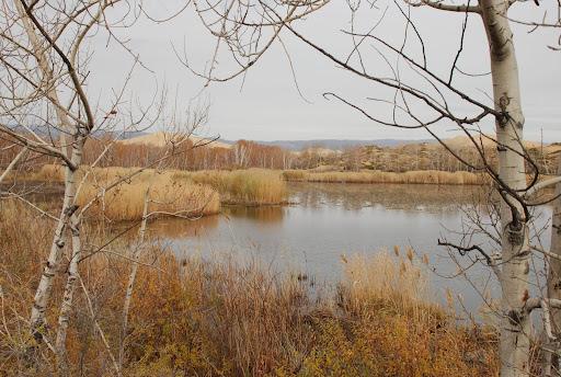 Xinjiang, Haba He - Bai Sha Hu