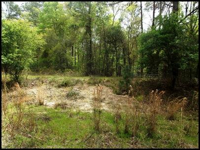 Gainesville to Hawthorn Bike Trail 149
