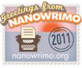Nano-participant2011