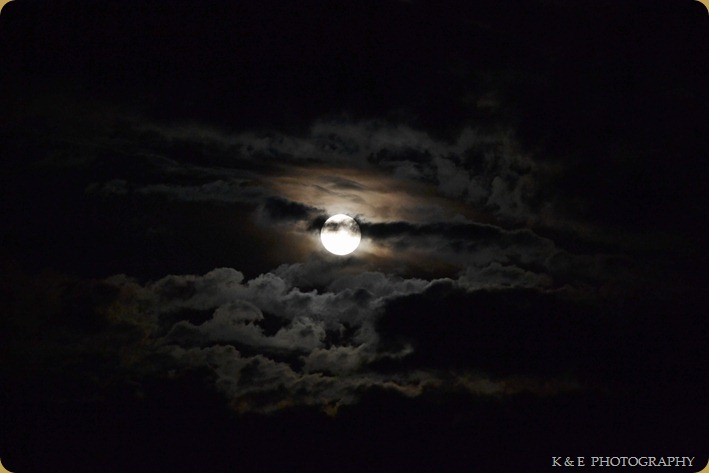 HARVESTMOON (1 of 1)-5
