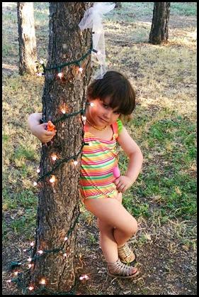 Cindy Tree