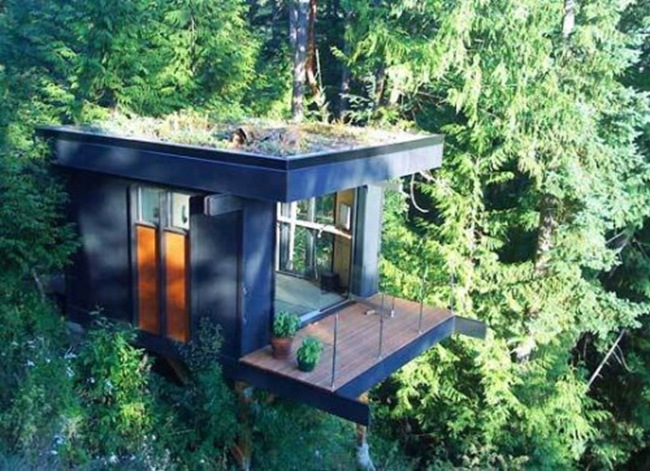dream-tree-houses-6-500x362