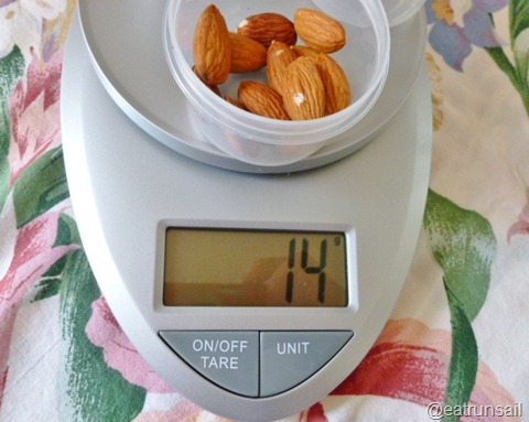 Jan 13 food scale 006