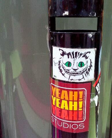 Grinsekatze: Katze