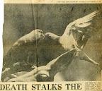 13/11/1971, Star