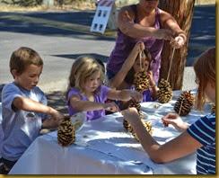pine cone bird feeder a