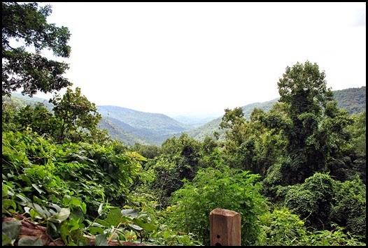 07b - View of Neel's Gap