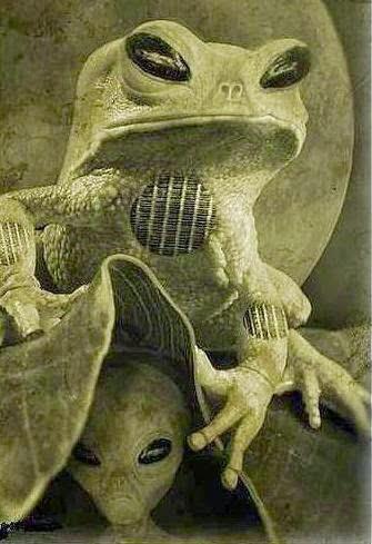 [Frog-Alien%255B3%255D.jpg]