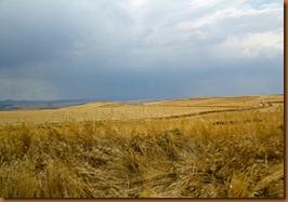 segovia, landscape