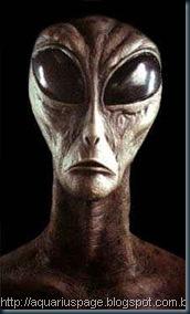 Anciões raça extraterrestre