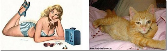 cats-pinup-models-14