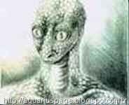Espíritos-Reptilianos-ou-Reptiloide