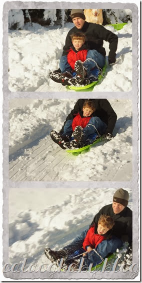 will sled