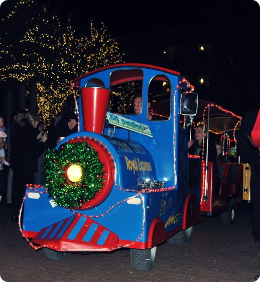Plano Christmas Tree Lighting 2012 025