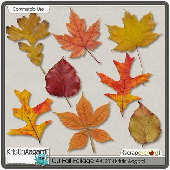_KAagard_CUFallFoliage4_PVW