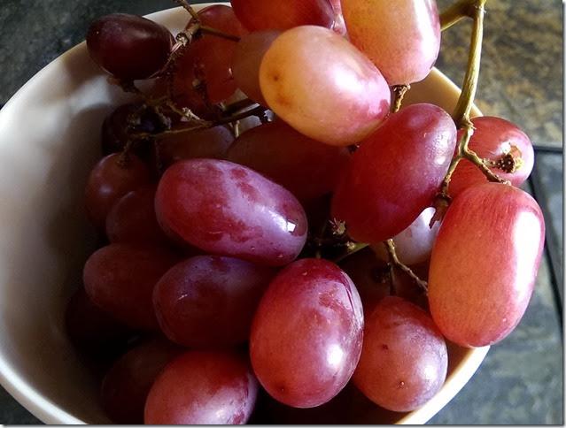 grapes-public-domain-pictures-1 (2263)