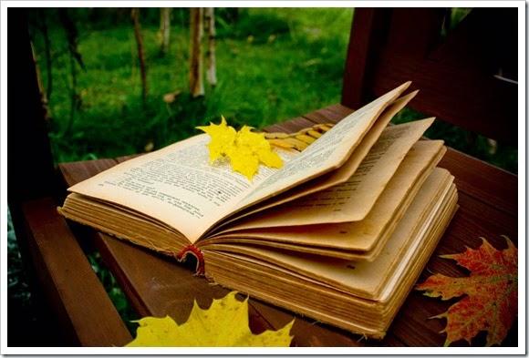 Lectura de Dividendos en Lo mejor de la semana Dividendo 51-2014