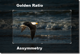 Gold Ratio cropping overlay in lightroom