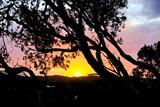 sunset 14209