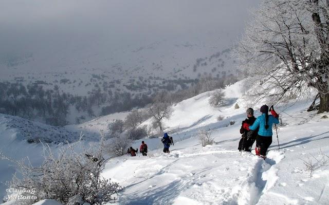 Macin-iarna-46_rw.jpg