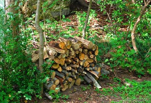 7. woodpile-kab