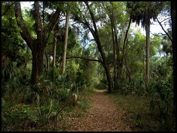 Gainesville to Hawthorn Bike Trail 044