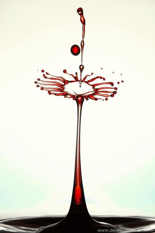 liquid-drop-art-gotas-caindo-foto-velocidade-hora-certa-desbaratinando (236)