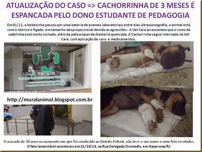 CACHORRINHA_3 MESES_ESPANCADA