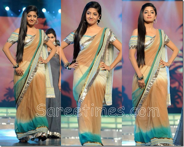 Poonam_Kaur_Designer_Saree