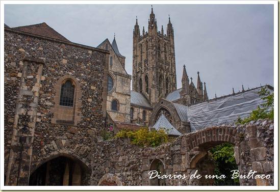 Canterbury-55