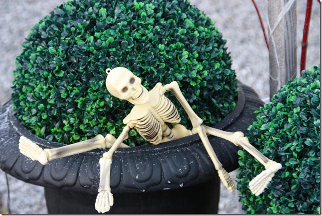 halloween dekor IMG_8150
