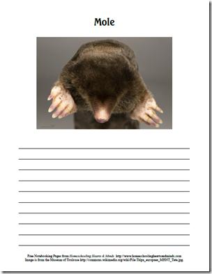 mole page